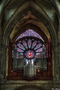 Cathedrale-08
