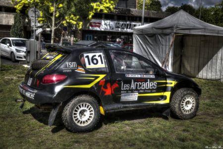 Rally-2017-JDLF-02
